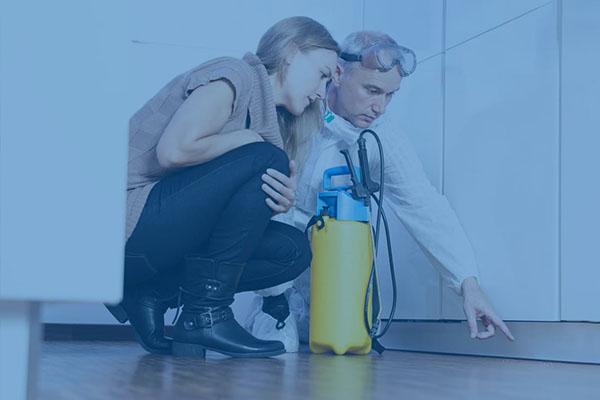 USA Pest Defense - Residential Pest Control - Serving Ocala and Marion County Florida